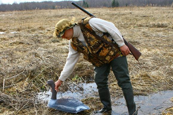 Весенняя охота 2015, открытие весенней охоты 2015, сроки весенней охоты 2015, весенняя охота на утку 2015, весенняя охота на гуся 2015, сезон весенней охоты 2015, открытие весенней охоты в области