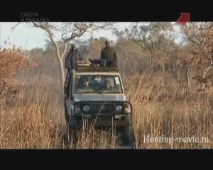Танзания-история-одного-сафари-300x240.j