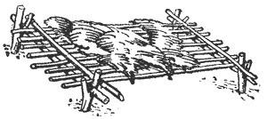 Рис. 11. Постель из еловых веток