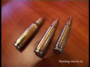 Ружья и боеприпасы