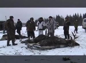 Основной инстинкт- Охота на лося