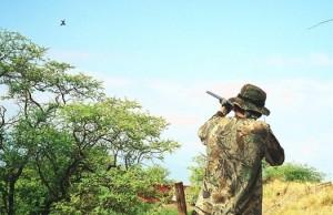 Охота в Борисполе
