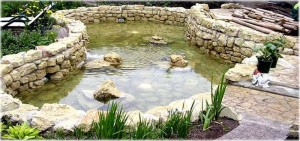 Decorative_ponds_16