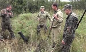 охота на бобра с собакой