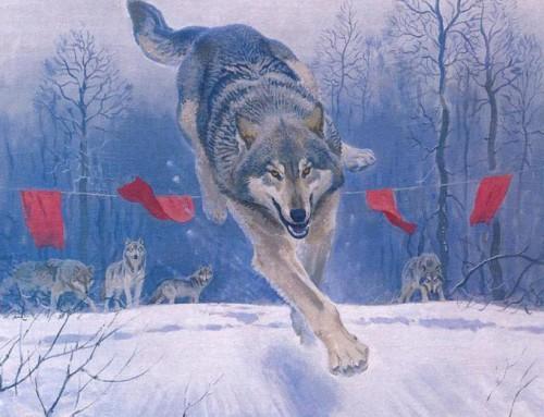 Применение флажков в охоте с гончими по зверю.