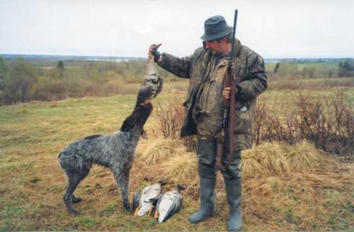 Охота на гусей.