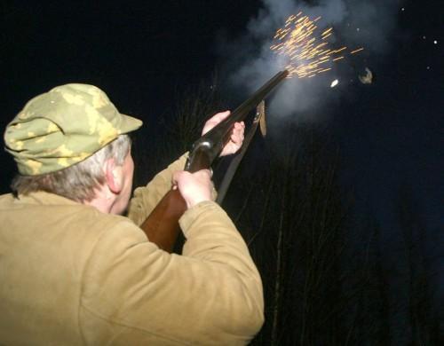 О стрельбе из ружья. Типичные ошибки молодых охотников при стрельбе.