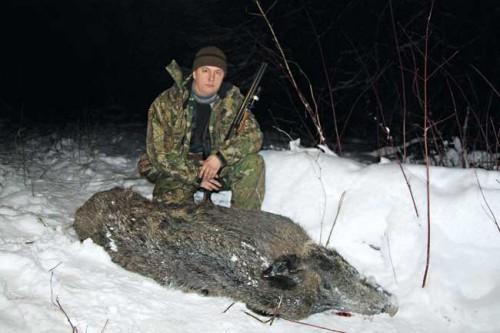 Оружие и патроны для охоты на лося и кабана.